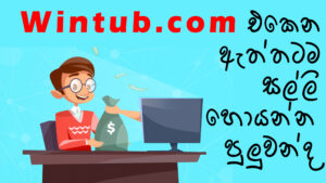 wintub review sinhalaa wintub.com salli hoyana adclick sri lanka